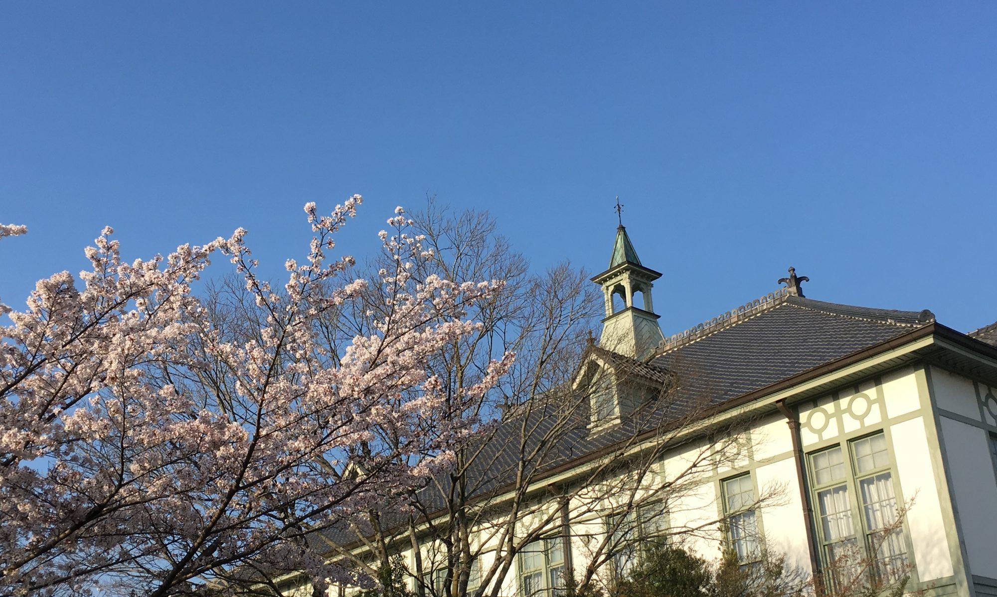 奈良女子大学 素粒子論研究室